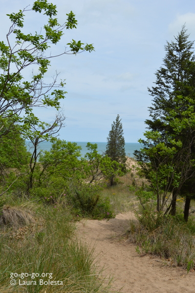 Indiana Dunes Trail © Laura Bolesta