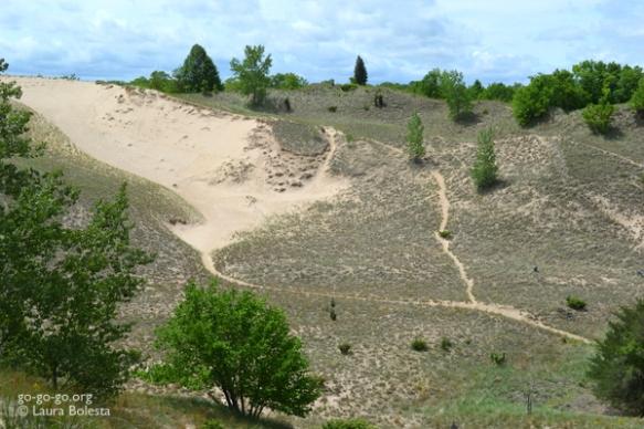 Indiana Dunes Blowout © Laura Bolesta