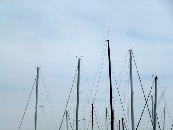 Everyday Photo: Masts
